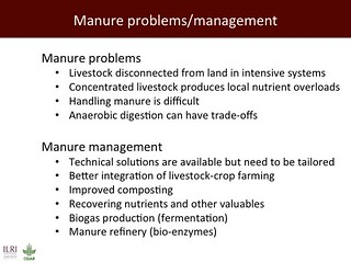 Manure problems/management