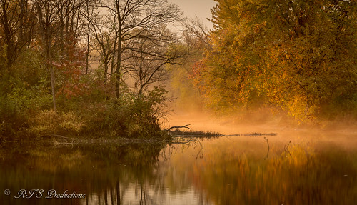 wood trees water sky pond october morninglight nature outdoors overcast leaves landscape fall fallcolors canon7d cloudysky cloudy clouds canon1585mmlens canon buschwildlife 7d autumn