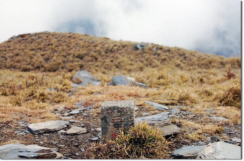 南大水窟山森林三角點(Elev. 3381 m) 1