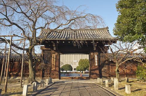 【写真】2013 紅葉 : 妙覚寺/2019-02-10/IMGP4166