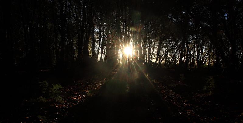 sunrise68
