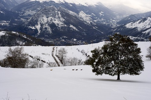 2013-11-26_Mont Fourcat 05