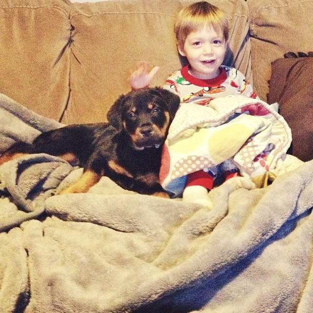 Icy Friday morning with the boy and his dog... #puppy #rottie