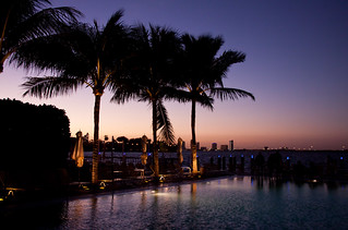 Pool at the Standard Hotel - Miami Beach, FL