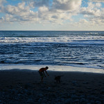 Praia da Maiata