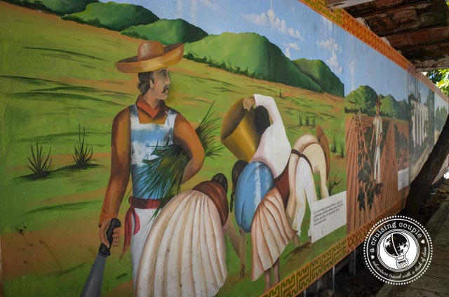 A Preview of Life in San Pancho, Mexico -  Murals