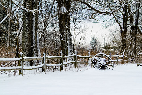 winter blackandwhite snow wheel fence canon55250mmislens