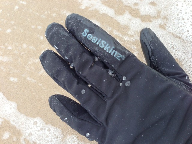 SealSkinz gloves