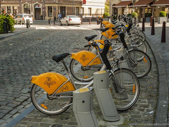 Bicicletas en el centro