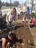 TOH School Garden 2014