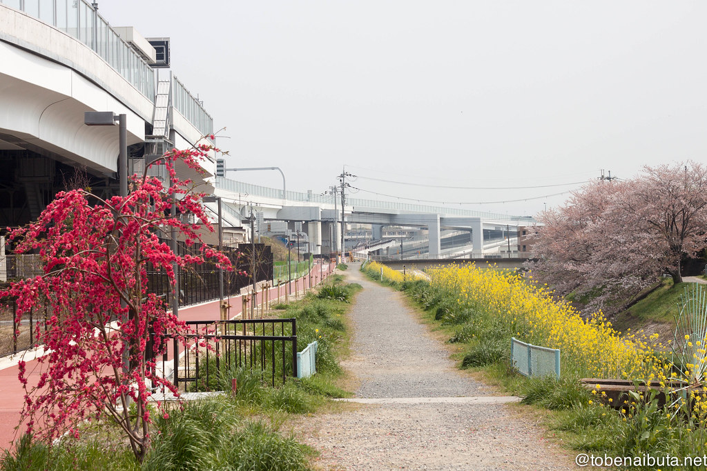 京都縦貫道と小泉川