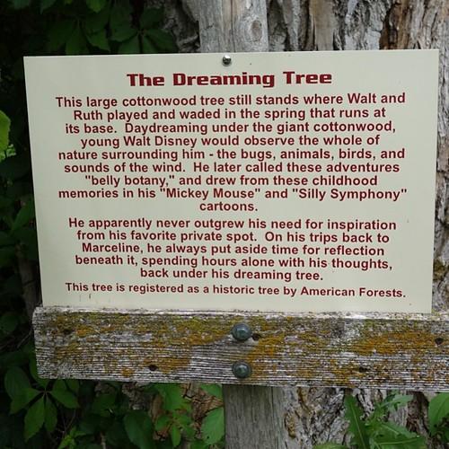 ドリーミングツリーの解説。