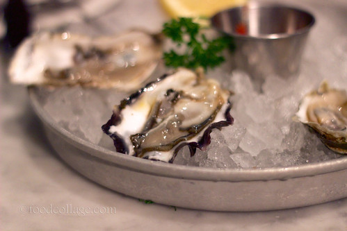 Oysters at Sotto Mare (San Francisco)
