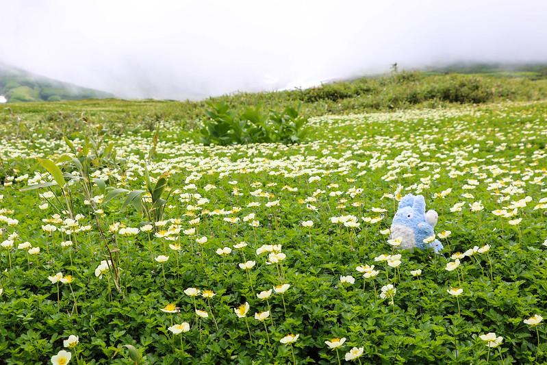 2014-07-20_01206_北海道登山旅行.jpg