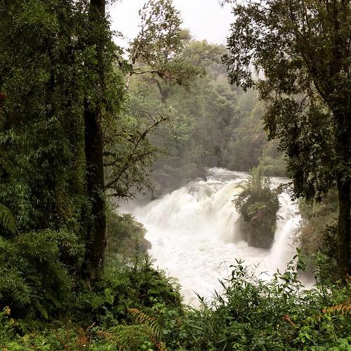 Parque Futangue #LagoRanco