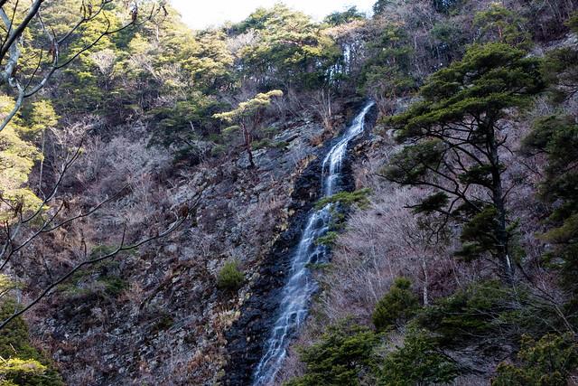 20150412-甲州高尾山-0090.jpg