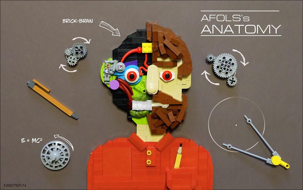 AFOL'S Anatomy (custom built Lego model)