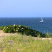 Cape Cod : Peaked Hill Bars by Chris Seufert
