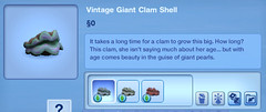 Vintage Giant Clam Shell