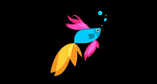 Windows 8.1 Preview Beta Fish