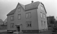 Ladetrøen på Lade (1983)