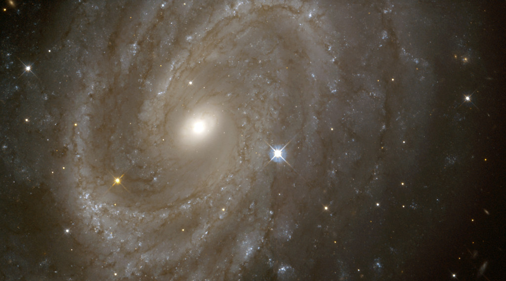 Variable Stars in a Distant Spiral Galaxy