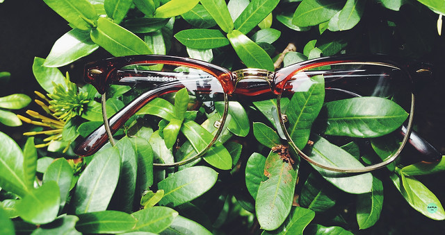 dresslink eyeglasses