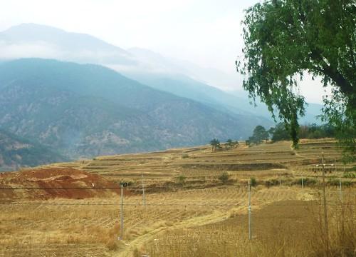 Yunnan13-Lijiang-Shangri La-Route (52)