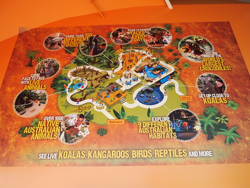 P9146529 WILD LIFE SYDNEY ZOO シドニー動物園