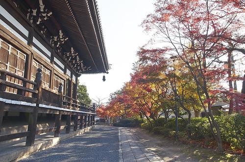 【写真】2013 紅葉 : 妙顕寺/2020-11-01/IMGP4133