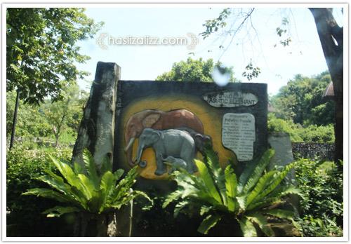 11712245736 b56bb49e0d o BERCUTI DI HATYAI THAILAND PART 6   songkhla Zoo