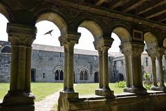 Abbaye de la Grainetière Les Herbiers