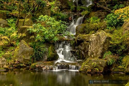 2013-10-26 Oregon Portland Japanese Garden Maple Pond Garden Pool-3