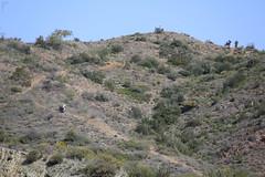 trail, mountain, shrubland, hill, geology, natural environment, plateau, terrain, wilderness, mountainous landforms,