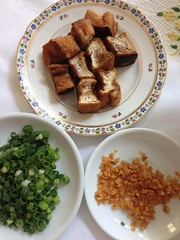 tofu, spring onion, fried garlic