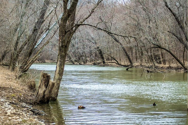 Charlestown State Park - Fourteenmile Creek