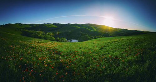 california sunrise jordanpond californiapoppies garin ebparksok