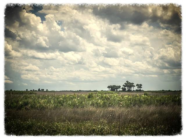 Kissimmee Prairie-016