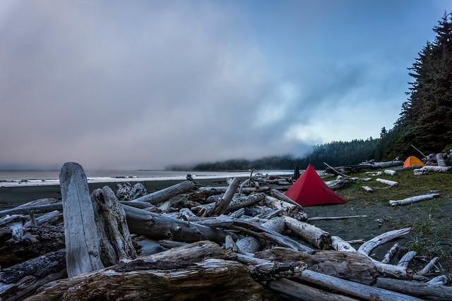 Carmanah Camp Morning