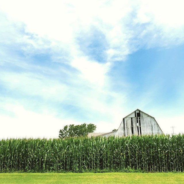 Who's with me? Aren't old #barns and blue #skies just so romantic? #Midwest girl.