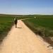 2013 Camino Day 13