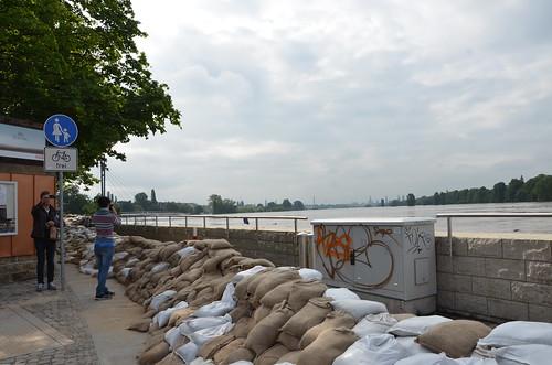 9024560884 2734bac0bc Elbehochwasser   Juni 2013
