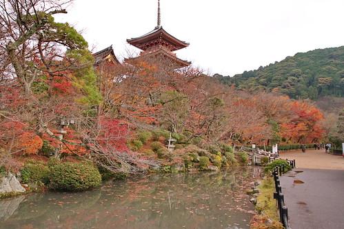 【写真】紅葉 : 清水寺(2)
