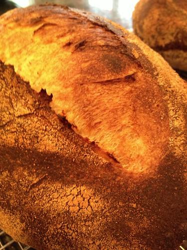 WFO 1st Bread