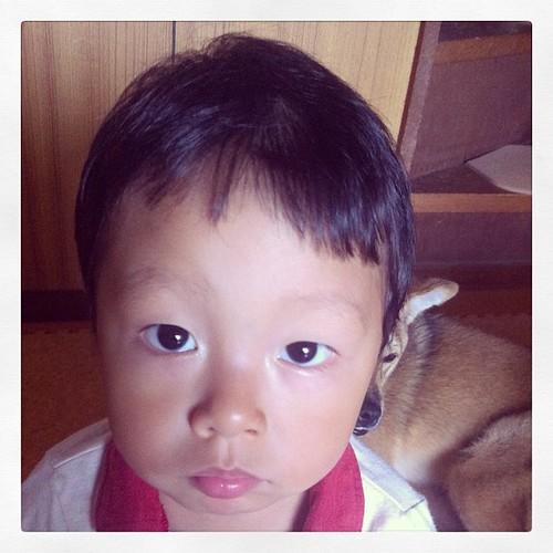 最近はなんでも「チガウ、チガウ」の2歳のアルアルさん#mynephewal