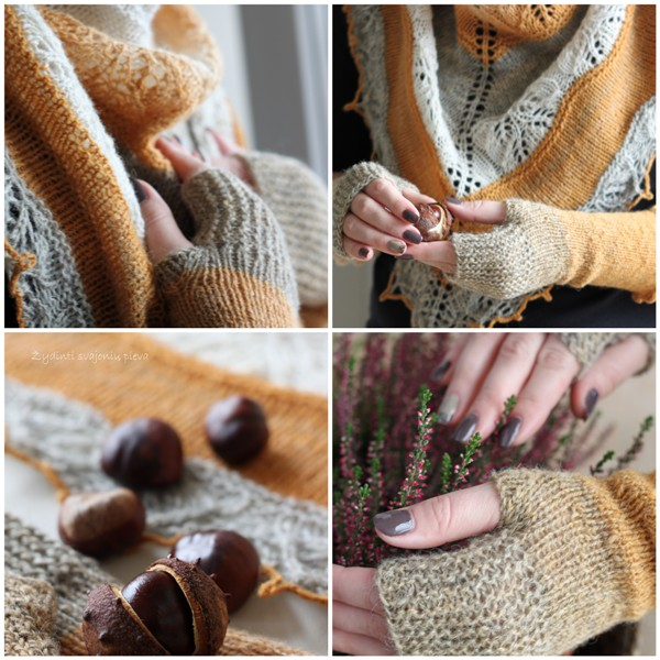 shawl & fingerless mitts