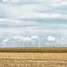 Windmills and Grainsilos