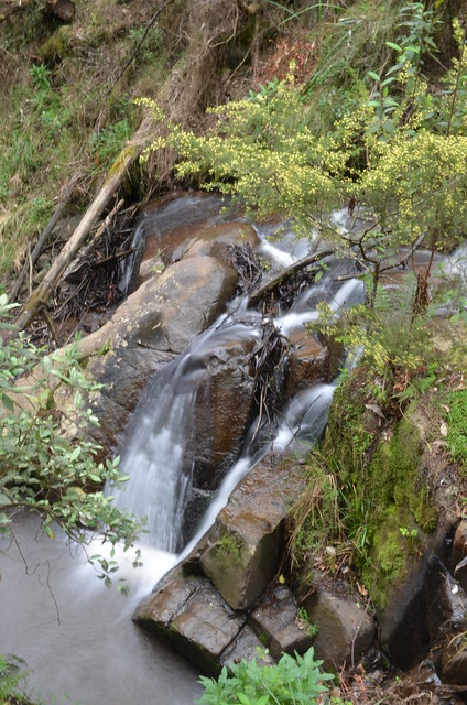 Upper Olinda Falls