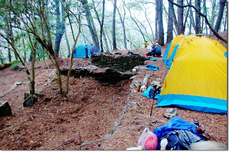 亞力士營地