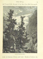 "British Library digitised image from page 25 of ""Switzerland, its mountains, lakes and valleys. With ... illustrations. New and revised edition"""